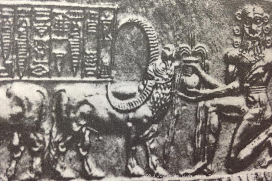 14-cilindro-sello